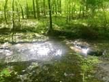 0 Wolf Creek Rd - Photo 4