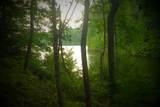177 Lake Louisa Loop - Photo 1