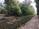 0 Buck Branch Rd - Photo 3