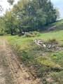 19 Turkey Creek Hwy - Photo 10