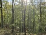 119 Blue Creek Ln - Photo 12