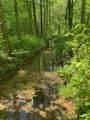 119 Blue Creek Ln - Photo 9