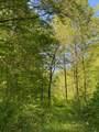 119 Blue Creek Ln - Photo 10