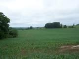 1525 Campbellsville Rd - Photo 2