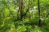 0 Scribners Mill - Photo 24