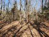 924 Smith Hill Rd - Photo 42