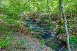 7379 Caney Fork Rd - Photo 3