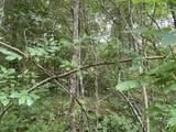 260 Hoot Owl Hollow Rd - Photo 38