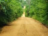 0 Scribners Mill - Photo 18