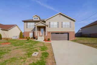 953 Silty Dr, Clarksville, TN 37042 (MLS #1801384) :: The Mohr Group at RE/MAX Elite