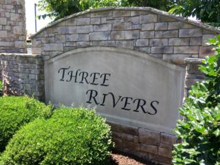 152 Three Rivers, Murfreesboro, TN 37128 (MLS #1803762) :: John Jones Real Estate LLC