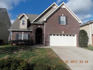 2942 Morning Mist Ct, Murfreesboro, TN 37128 (MLS #1804589) :: John Jones Real Estate LLC