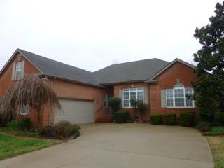 815 Balleycastle Dr, Smyrna, TN 37167 (MLS #1804669) :: John Jones Real Estate LLC
