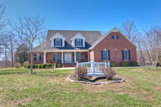 183 Cole Springs Ln, Woodbury, TN 37190 (MLS #1809320) :: The Mohr Group at RE/MAX Elite