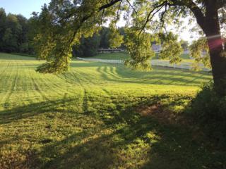 7412 Magnolia Valley Dr, Eagleville, TN 37060 (MLS #1811446) :: John Jones Real Estate LLC