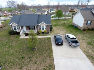 111 Filly Ln, Springfield, TN 37172 (MLS #1812397) :: The Mohr Group at RE/MAX Elite