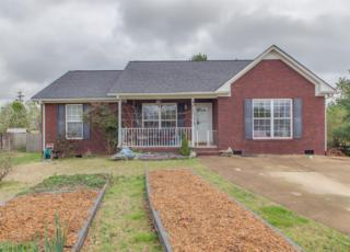 2812 Masons Ct, Spring Hill, TN 37174 (MLS #1812475) :: NashvilleOnTheMove | Benchmark Realty