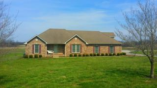 1601 Dunlop Ln, Clarksville, TN 37043 (MLS #1812711) :: NashvilleOnTheMove | Benchmark Realty