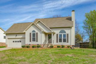 1007 Dandelion Drive, Clarksville, TN 37042 (MLS #1812729) :: The Mohr Group at RE/MAX Elite