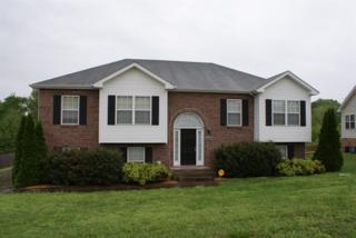 222 Harold Dr, Clarksville, TN 37040 (MLS #1820588) :: KW Armstrong Real Estate Group