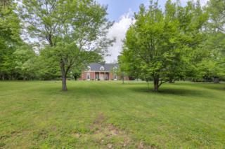 4231 Franklin Pike, Nashville, TN 37204 (MLS #1821781) :: KW Armstrong Real Estate Group