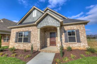 2133 Gold Valley Dr, Murfreesboro, TN 37130 (MLS #1821953) :: John Jones Real Estate LLC