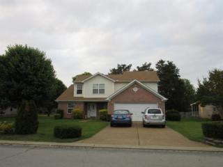 163 Little Turtle Way, Murfreesboro, TN 37127 (MLS #1822522) :: John Jones Real Estate LLC