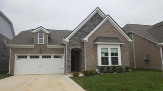 3312 Milkweed Dr, Murfreesboro, TN 37128 (MLS #1822549) :: KW Armstrong Real Estate Group