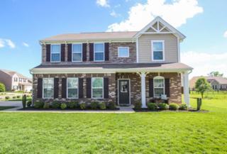 3119 Morning Mist Way, Murfreesboro, TN 37128 (MLS #1822556) :: John Jones Real Estate LLC