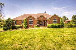 6510 Whittemore Ln, Cane Ridge, TN 37013 (MLS #1828560) :: KW Armstrong Real Estate Group