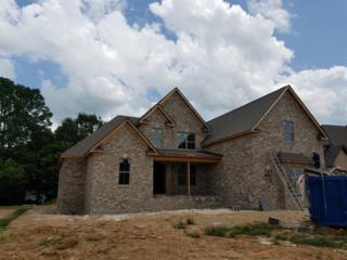2019 Autumn Ridge Way (215), Spring Hill, TN 37174 (MLS #1829349) :: NashvilleOnTheMove | Benchmark Realty
