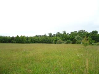 5 .03 Ac. W. Cole Road, Doyle, TN 38583 (MLS #1829581) :: NashvilleOnTheMove | Benchmark Realty