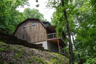 975 Blackberry Hill Rd, Silver Point, TN 38582 (MLS #1829702) :: CityLiving Group