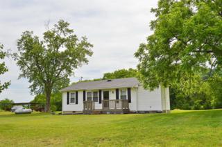1446 Tunnell Hill Rd, Cornersville, TN 37047 (MLS #1829780) :: The Kelton Group