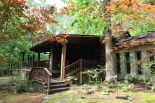 2435 Clifftops Ave, Monteagle, TN 37356 (MLS #1830684) :: John Jones Real Estate LLC