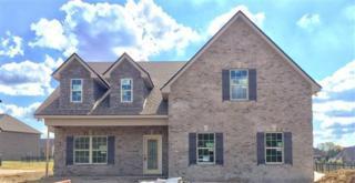 1213 Rivercrest Drive, Murfreesboro, TN 37129 (MLS #1830811) :: John Jones Real Estate LLC