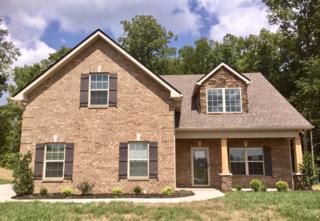 1118 Springcreek Drive, Murfreesboro, TN 37129 (MLS #1830817) :: John Jones Real Estate LLC