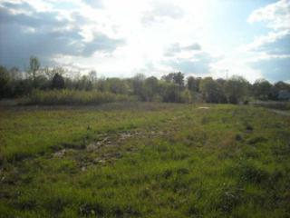 1049 New Hope Rd, Joelton, TN 37080 (MLS #1830977) :: EXIT Realty The Mohr Group & Associates