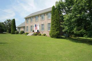 1003 Laura Ln, Springfield, TN 37172 (MLS #1831137) :: EXIT Realty The Mohr Group & Associates