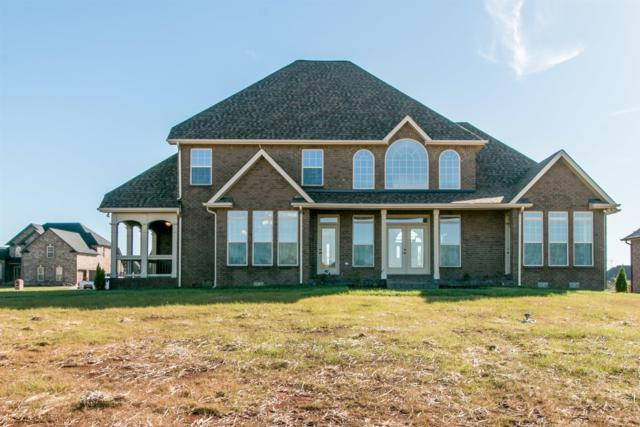 67 Hartley Hills, Clarksville, TN 37043 (MLS #1840786) :: DeSelms Real Estate