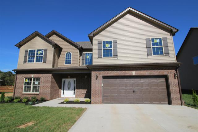291 The Groves At Hearthstone, Clarksville, TN 37040 (MLS #1958949) :: REMAX Elite