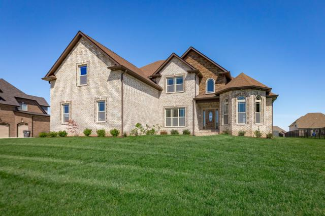 52 Hartley Hills, Clarksville, TN 37043 (MLS #1952119) :: The Helton Real Estate Group