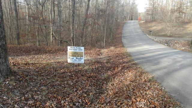 650 Oak Shadow Dr, New Johnsonville, TN 37134 (MLS #1786300) :: CityLiving Group