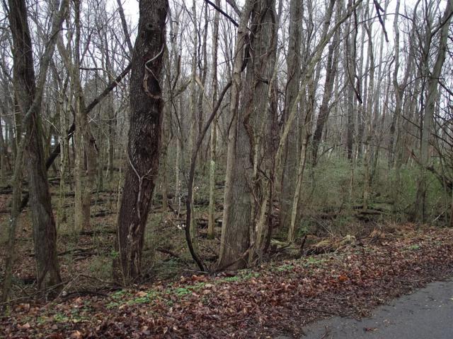 0 Dunbar Dell Rd, Clarksville, TN 37043 (MLS #1793193) :: CityLiving Group