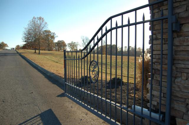 4040 Ironwood Dr, Greenbrier, TN 37073 (MLS #1810239) :: Team Wilson Real Estate Partners