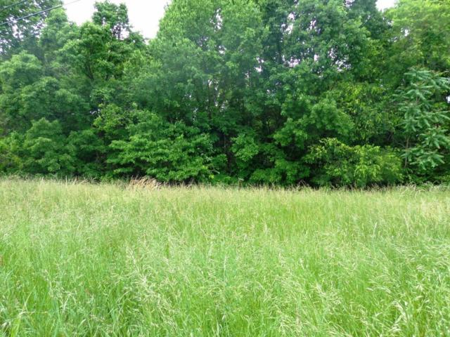 3 Overlook Ln, Shelbyville, TN 37160 (MLS #1826010) :: CityLiving Group