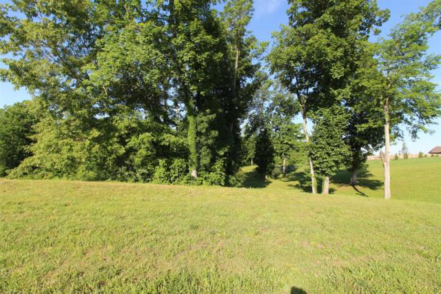 102 Mallard Pt, Lebanon, TN 37087 (MLS #1831928) :: KW Armstrong Real Estate Group
