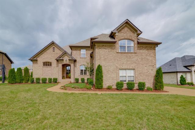 115 Alderwood Dr, Hendersonville, TN 37075 (MLS #1839877) :: DeSelms Real Estate
