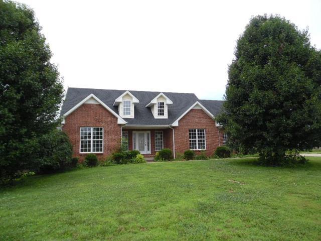3913 Tyler Brown Dr, Clarksville, TN 37040 (MLS #1839931) :: DeSelms Real Estate