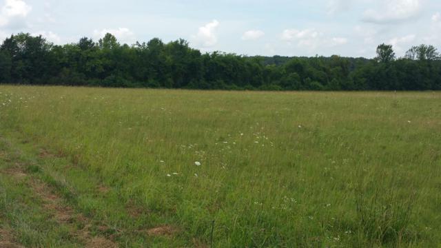 5 Allisona Rd, Eagleville, TN 37060 (MLS #1840604) :: John Jones Real Estate LLC